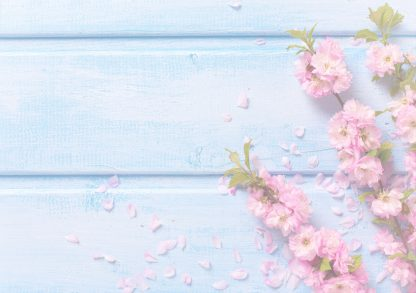 BH Beauty Gift Voucher Pink Flowers on Blue Background